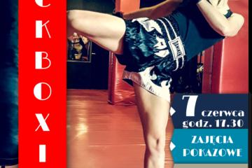 plakat kickboxing